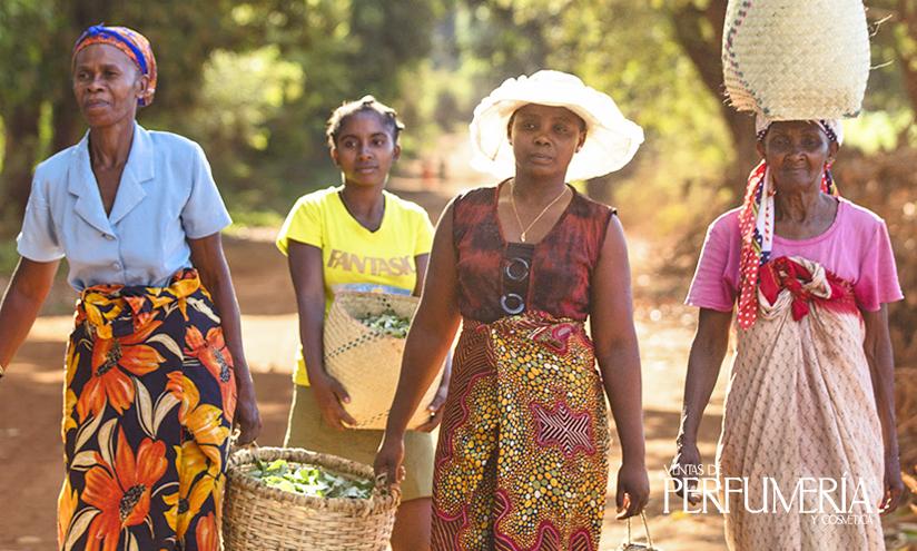 Comercio Justo Madagascar